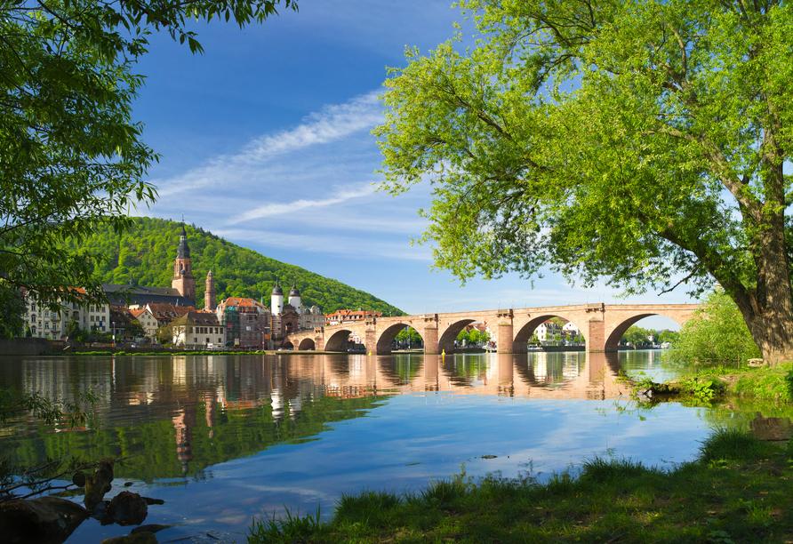 Hotel Zum Weissen Lammin Rothenberg-Kortelshütte im Odenwald, , Heidelberg Landschaft