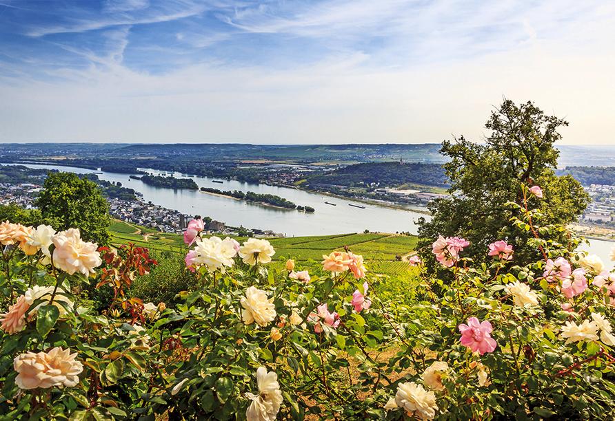 MS VistaSun, Rüdesheim am Rhein