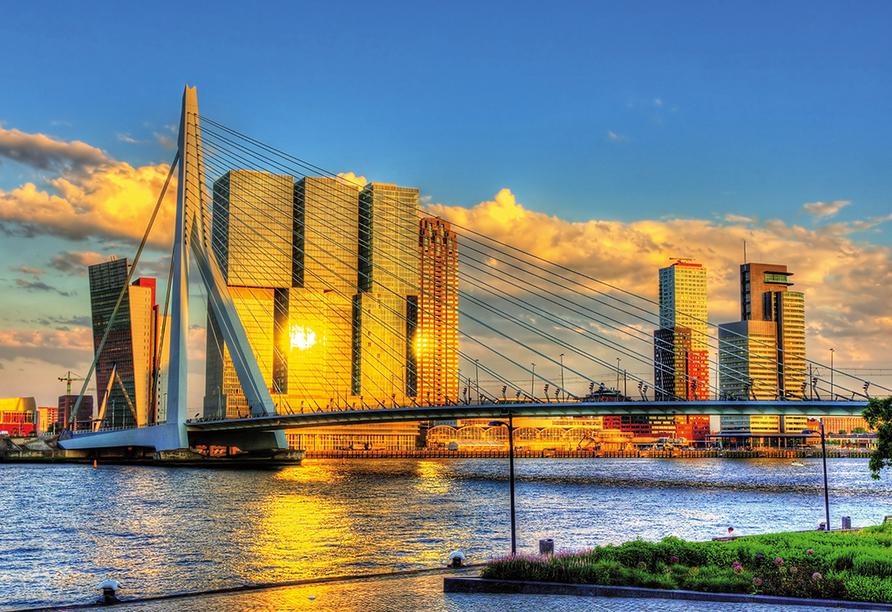 MS Olympia, Rotterdam