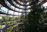 Landhotel Rosenberger in Wegscheid im Bayerischen Wald, Baumwipfelbad