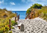 Finden Sie Ihren Lieblinsgstrandabschnitt auf der schönen Ostseeinsel.