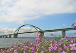 Die Fehmarnsundbrücke – das Wahrzeichen der Insel.