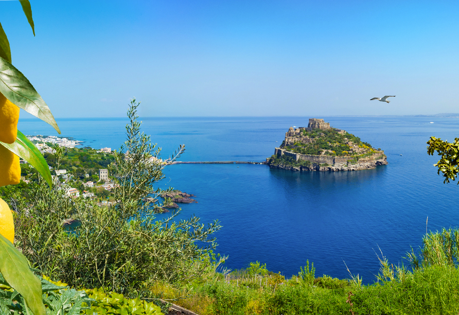 Willkommen auf der eindrucksvollen Insel Ischia.