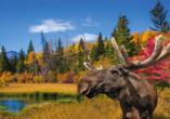 West-Kanada-Reise, Natur