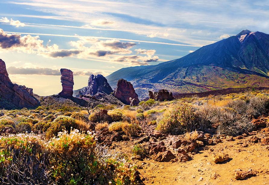 Mein Schiff 3, Nationalpark Cañadas del Teide