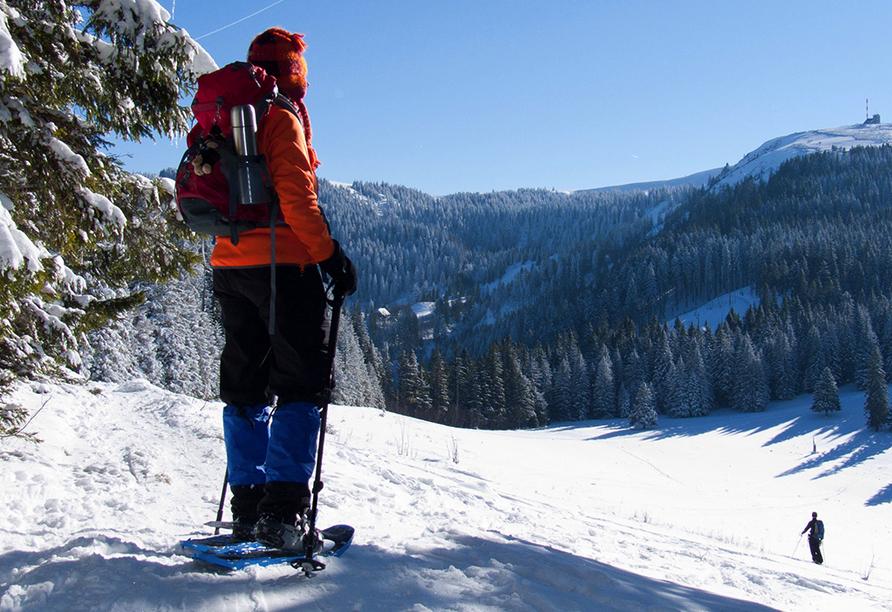 Landhotel am Sonnenhang in Pleystein, Skifahren