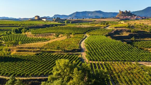 Zentral- und Nordspanien entdecken, La Rioja