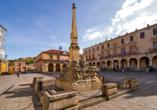 Zentral- und Nordspanien entdecken, Soria