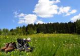 Hotel Edelweiss in Willingen, Wandern