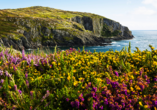 Rundreise Irland, Ring of Kerry