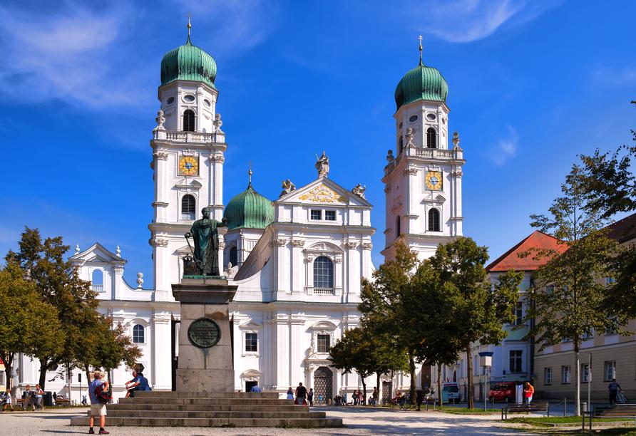 Amedia Express Passau, Dom