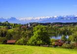 Rundreise Bodensee, Titisee, Elsass, Frühling am östlichen Bodensee
