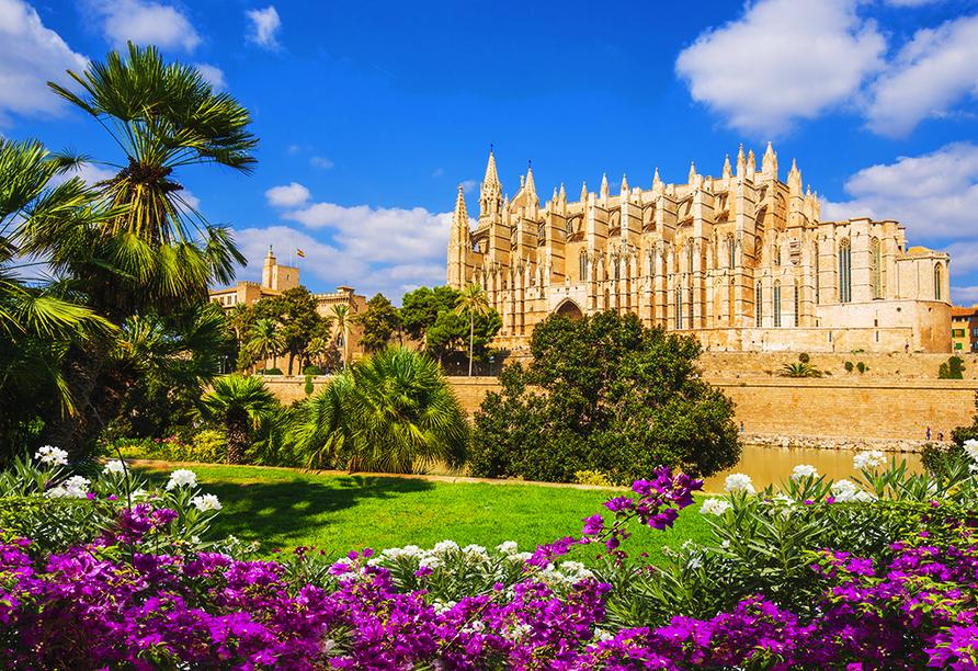 Ein unvergesslicher Urlaub auf Mallorca erwartet Sie!