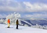 Hotel Waldhaus am See, Skigebiet Willingen