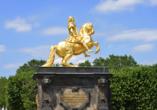 Wyndham Garden Dresden, Goldener Reiter