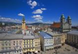 MS Primadonna, Linz