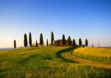 The Florence Hills Resort & SPA, Toskana