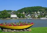 MS Anesha, Linz am Rhein