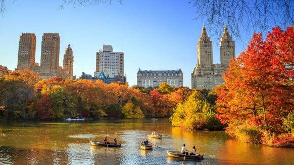 Mein Schiff 1, Central Park
