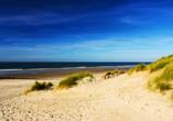 Die weiten Sandstrände auf Ameland erwarten Sie mit einem tollen Ausblick auf die raue Nordsee.