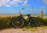 Die Insel können Sie auch ganz bequem mit dem Rad erkunden.