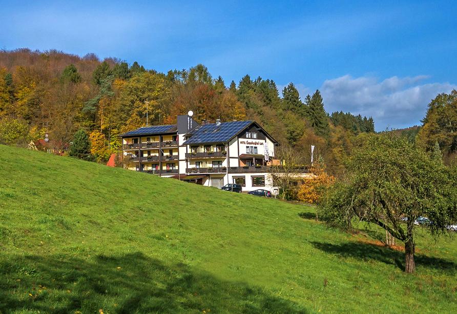 Hotel Gassbachtal in Grasellenbach, Odenwald, Hotel