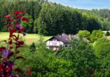 Hotel Gassbachtal in Grasellenbach, Odenwald, Im Grünen