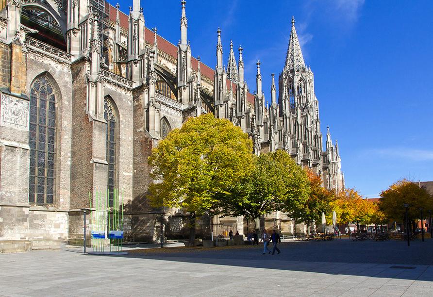 Bestaunen Sie das Ulmer Münster.