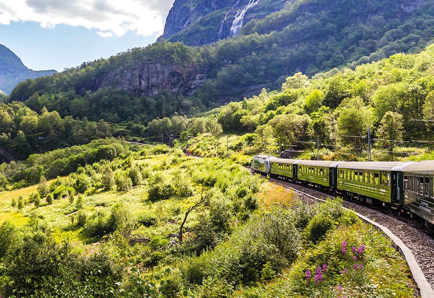Norwegens Highlights, Flåmsbana