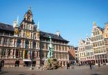 MS VistaSerenity, Antwerpen
