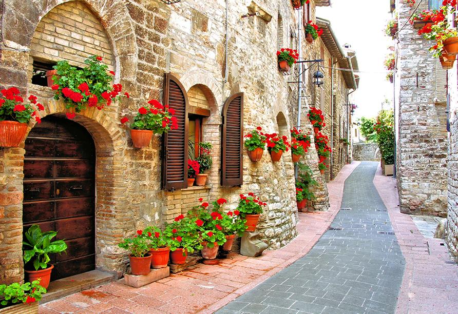 Hotel Nuovo Tirreno in Camaiore, Toskana, Italien, Gasse in der Toskana