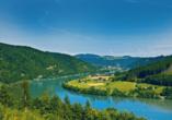 MS Alena, Donautal