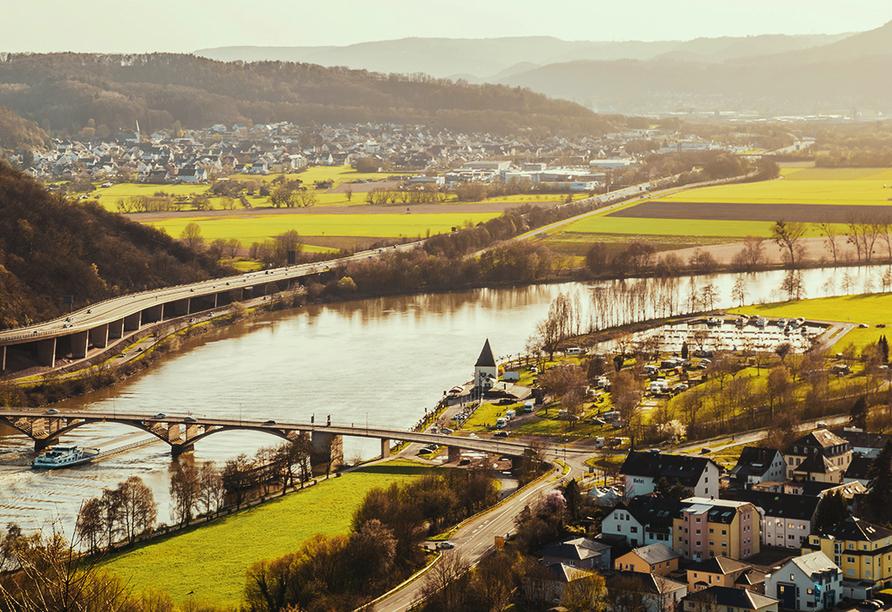 DCS Amethyst Classic, Schweich