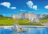 MS Prinzessin Katharina, Wien