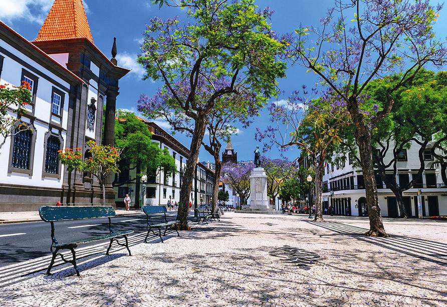 Hotel Vila Baleira Funchal Madeira, Stadtansicht