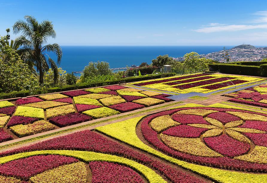 Hotel Vila Baleira Funchal Madeira, Botanischer Garten