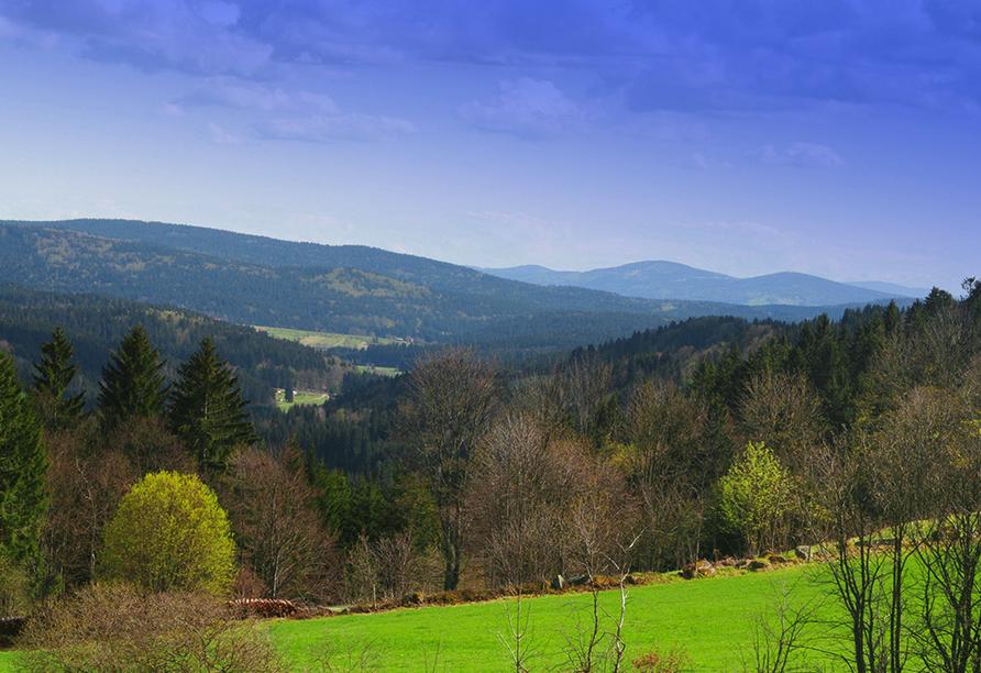 Hotel Am Pfahl in Viechtach, Bayerischer Wald