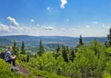Waldhotel Hubertus in Eisenfeld, Panorama Thüringer Wald mit Wanderer