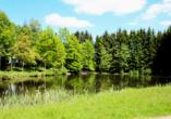 Am hoteleigenen Weiher können Sie im Freien grillen, angeln, schwimmen oder einfach nur die Ruhe der Natur genießen.