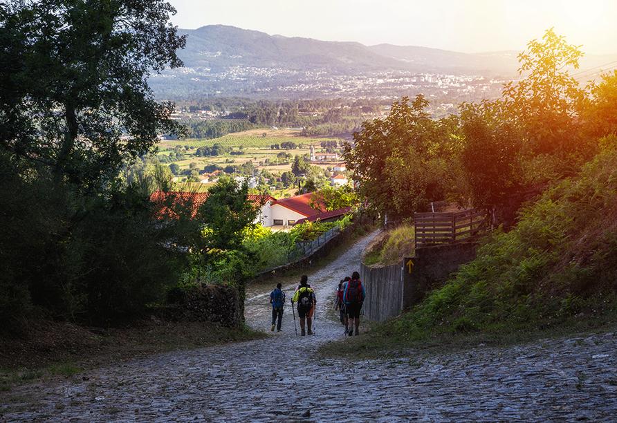 Genießen Sie die vielfältige Landschaft auf Ihrer Wanderung nach Santiago de Compostela.