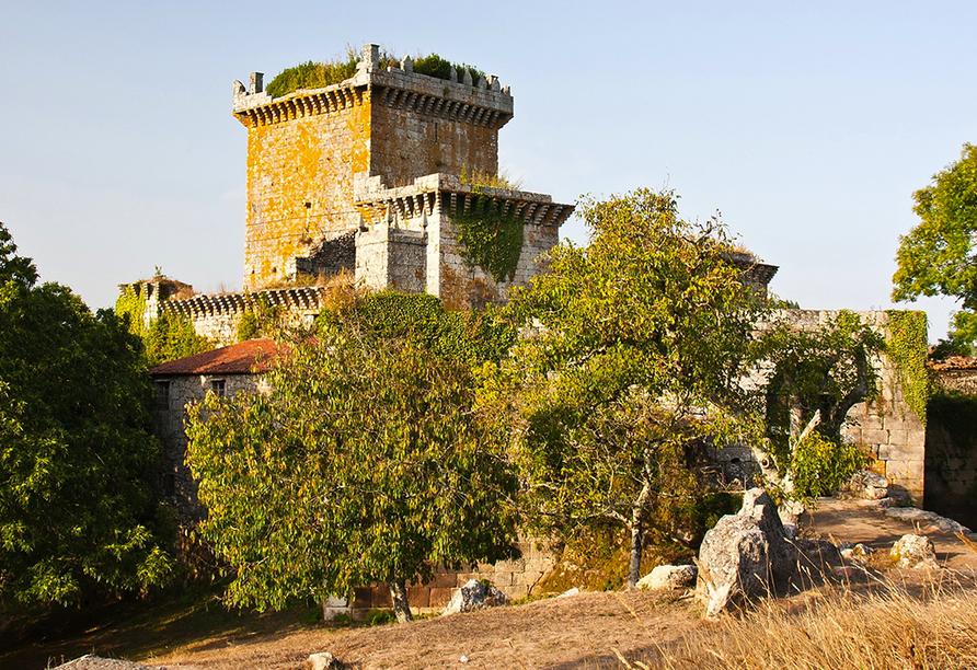Auf dem Weg von Palas de Rei nach Melide haben Sie einen wunderbaren Blick auf das Schloss Pambre.