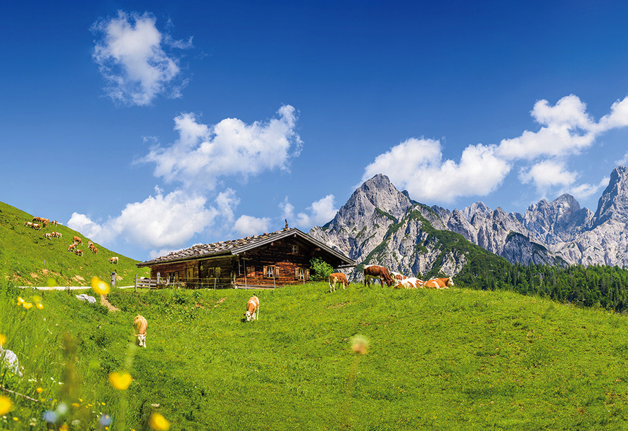 Lifthotel Aschaber in Kirchberg, Österreich, Berghütte