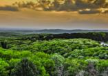 Der serbische Nationalpark Fruška Gora.