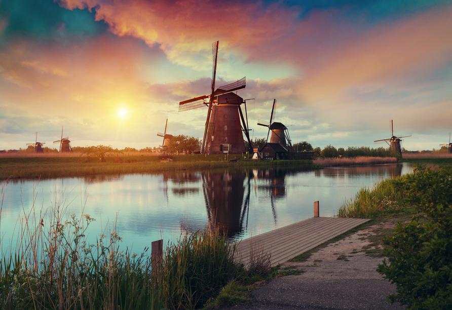 MS Annika, Niederlande