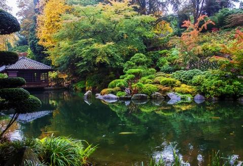 Vergessen Sie den Alltag bei einem Spaziergang durch den Japanischen Garten in Kaiserslautern.