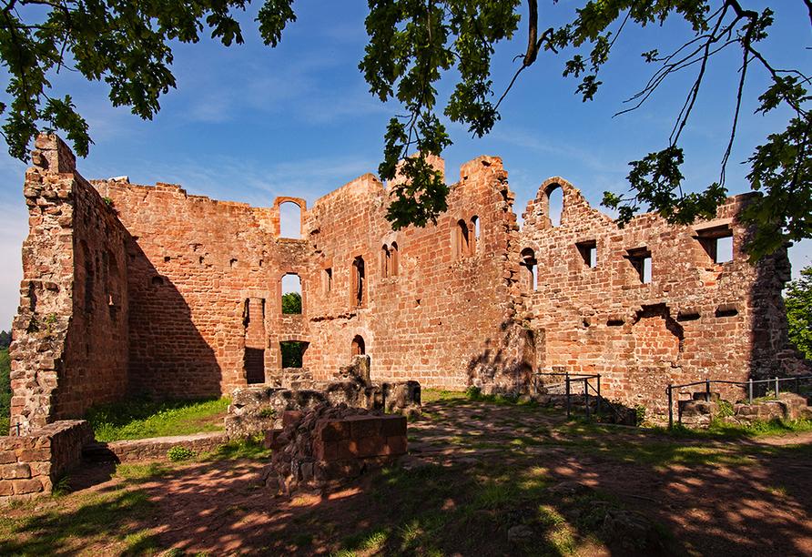 Besichtigen Sie die Ruine der Burg Hohenecken, ca. 15 min Autofahrt von Ihrem Hotel entfernt.