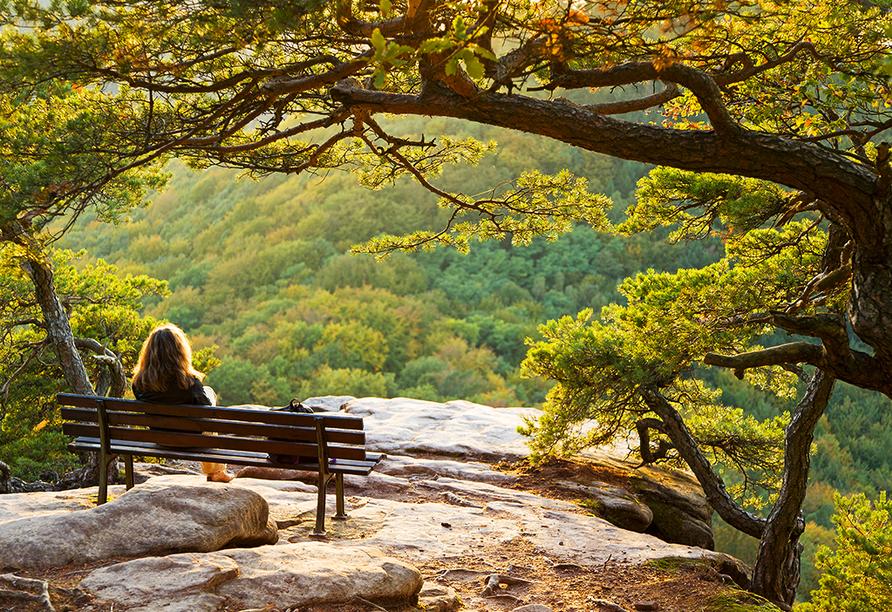 Vom Schlüsselfels bei Busenberg im Pfälzer Wald haben Sie eine atemberaubende Aussicht.