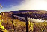 Freuen Sie sich auf die edlen Tropfen der Region und besuchen Sie die Weinstadt Zell an der Mosel