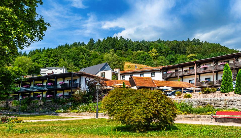Freuen Sie sich auf einen traumhaften Urlaub im Schwarzwald!