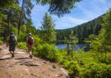 Wandern im Schwarzwald ist ein besonderes Erlebnis.